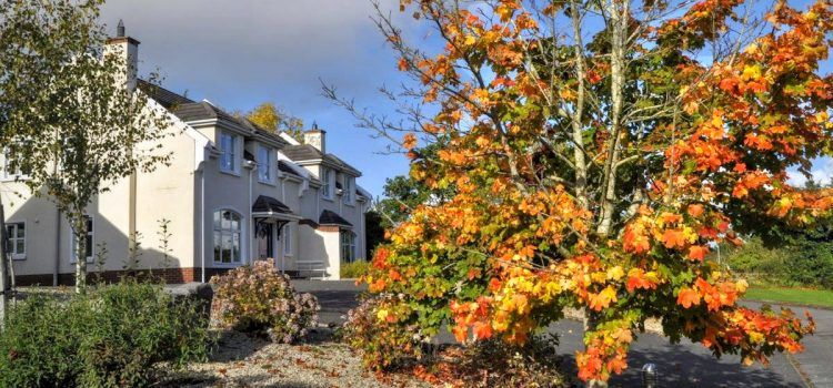 Autumn Availability Offers at Rathmullan Cottages